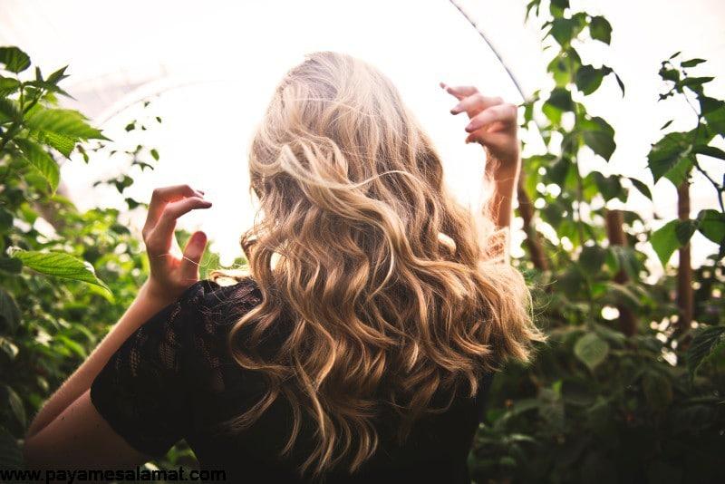 استفاده از روغن زیتون برای مراقبت از مو