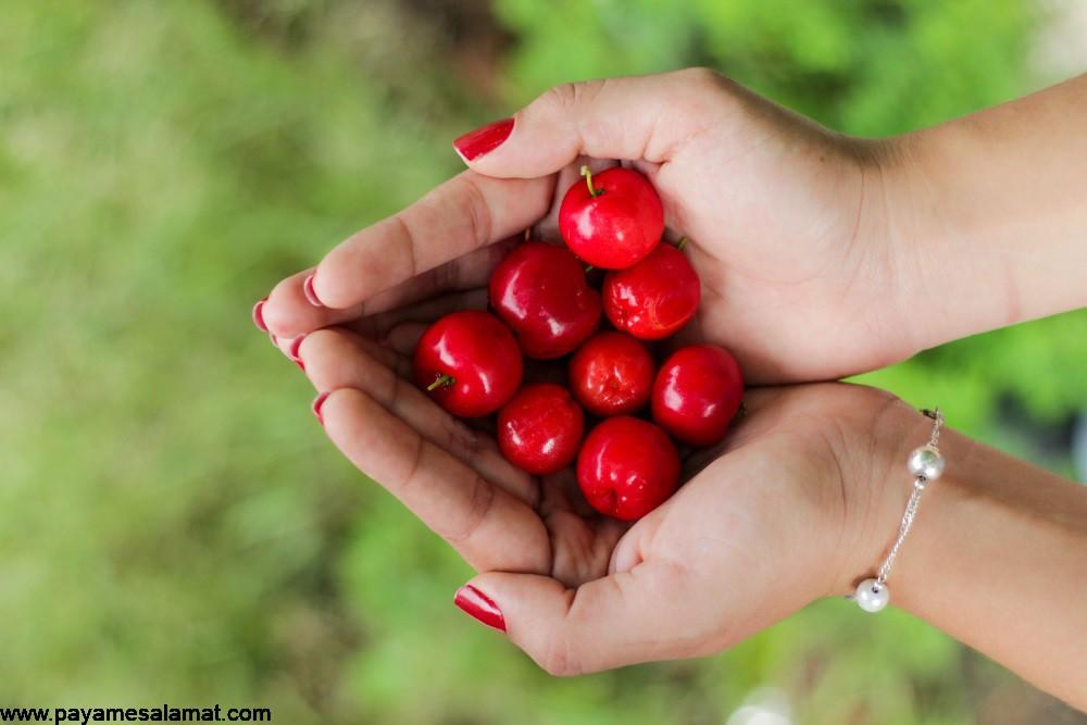 گیلاس باربادوس ؛ میوه ای غنی از ویتامین C از خواص تا عوارض مصرف آن