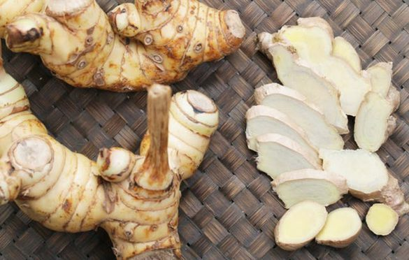 خواص گیاه خسرودار یا همان ریشه گالانگال