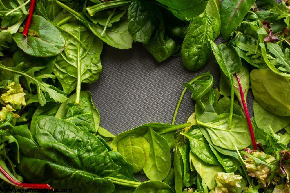 مواد غذایی مفید برای رشد قد و جلوگیری از کوتاهی قامت در میانسالی