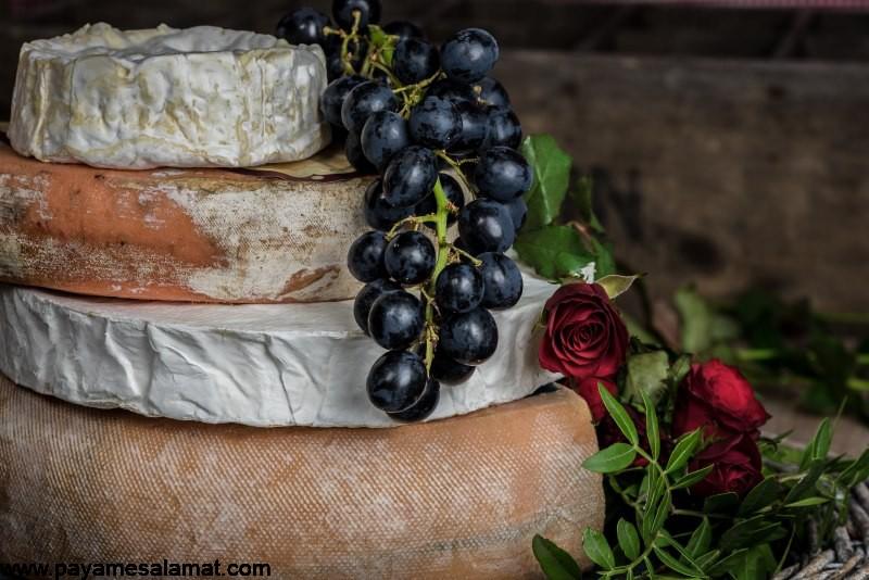 خواص و ارزش غذایی پنیر ریکوتا