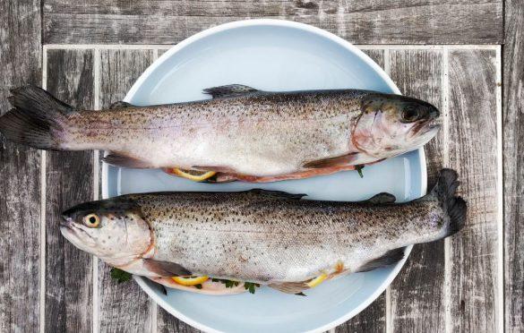 ارزش غذایی و خواص پوست ماهی